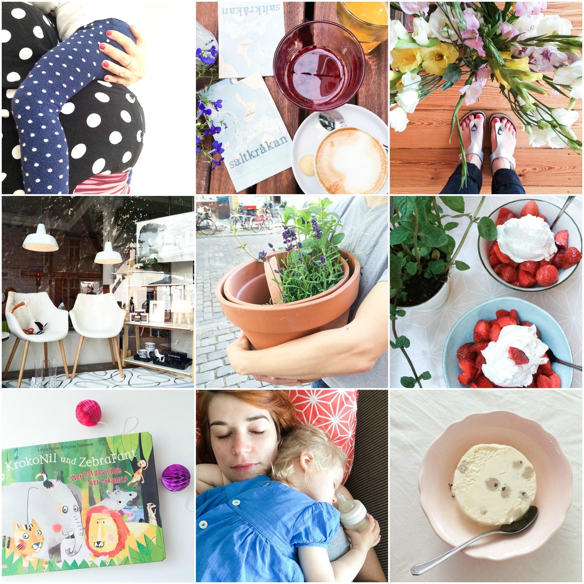 Instagram Rückblick Juli 3