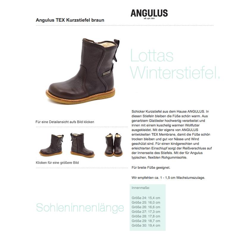 Angulus Stiefel