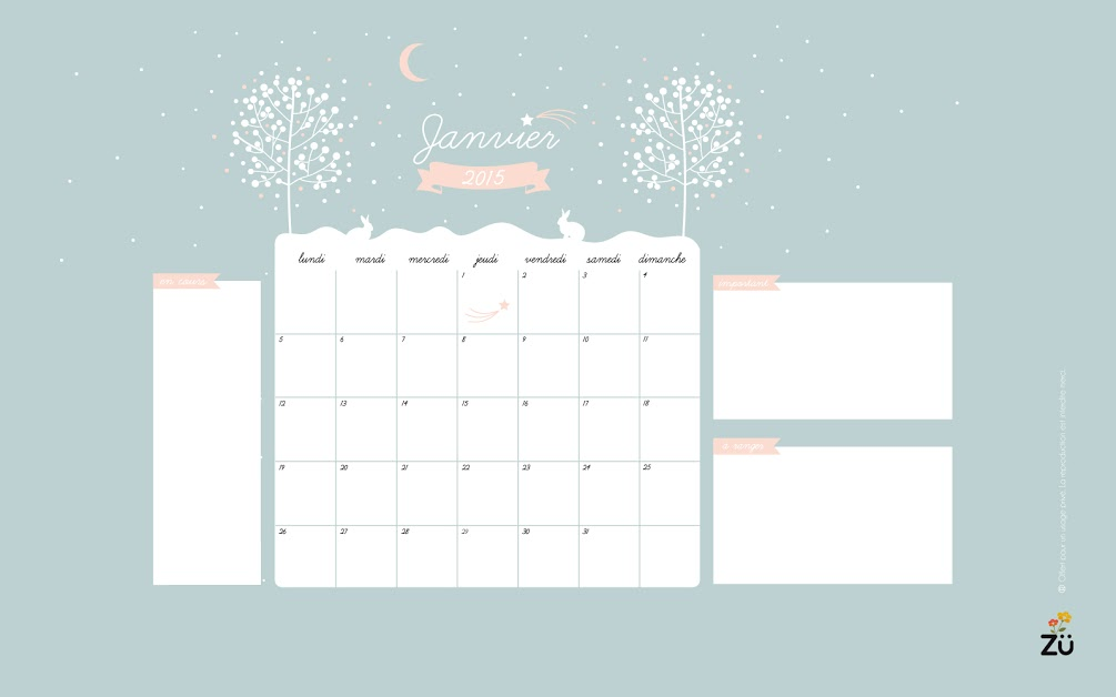 calendrier-fondecran-zu-janvier2015-2