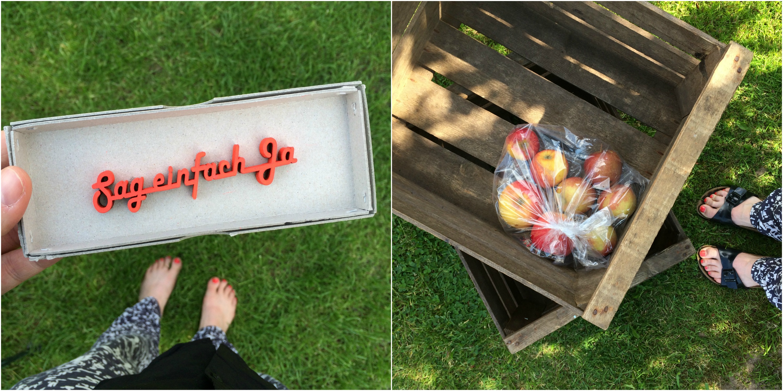 Picknick | Pinkepank