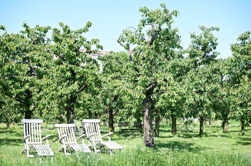 Picknicken im Alten Land | Pinkepank (11)
