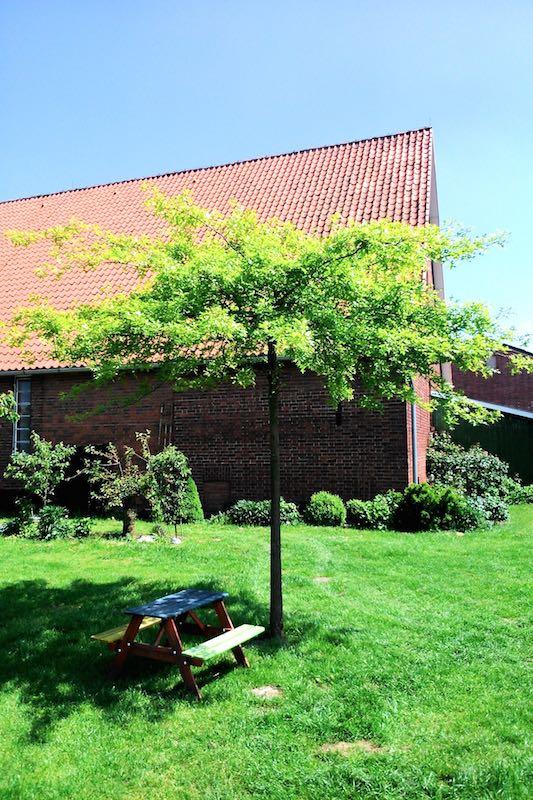 Picknicken im Alten Land bei Schuback | Pinkepank (2)