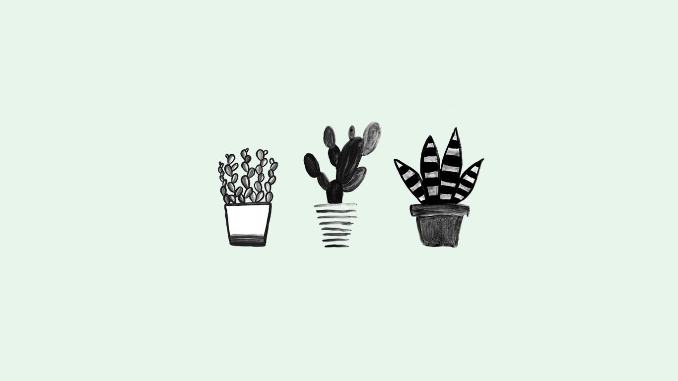 Wallpaper-Juni-Desktophintergrund-Kaktus-Sukkulenten-Pflanzen-mint-minimalistisch-Bildschirmhintergrund-subvoyage-Laptop
