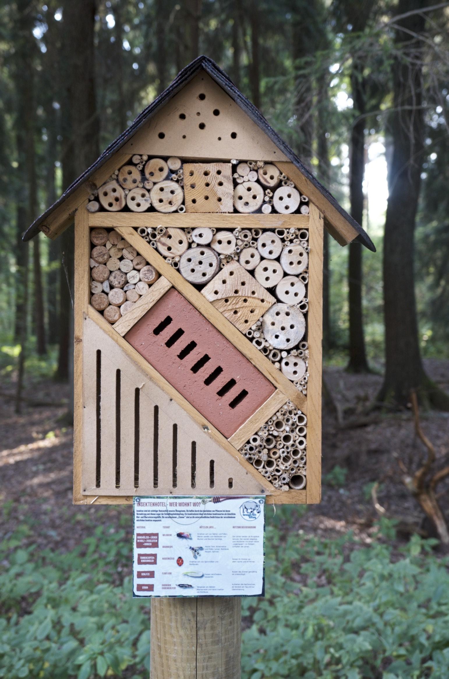 Bienen im Serengeti Park Hodenhagen