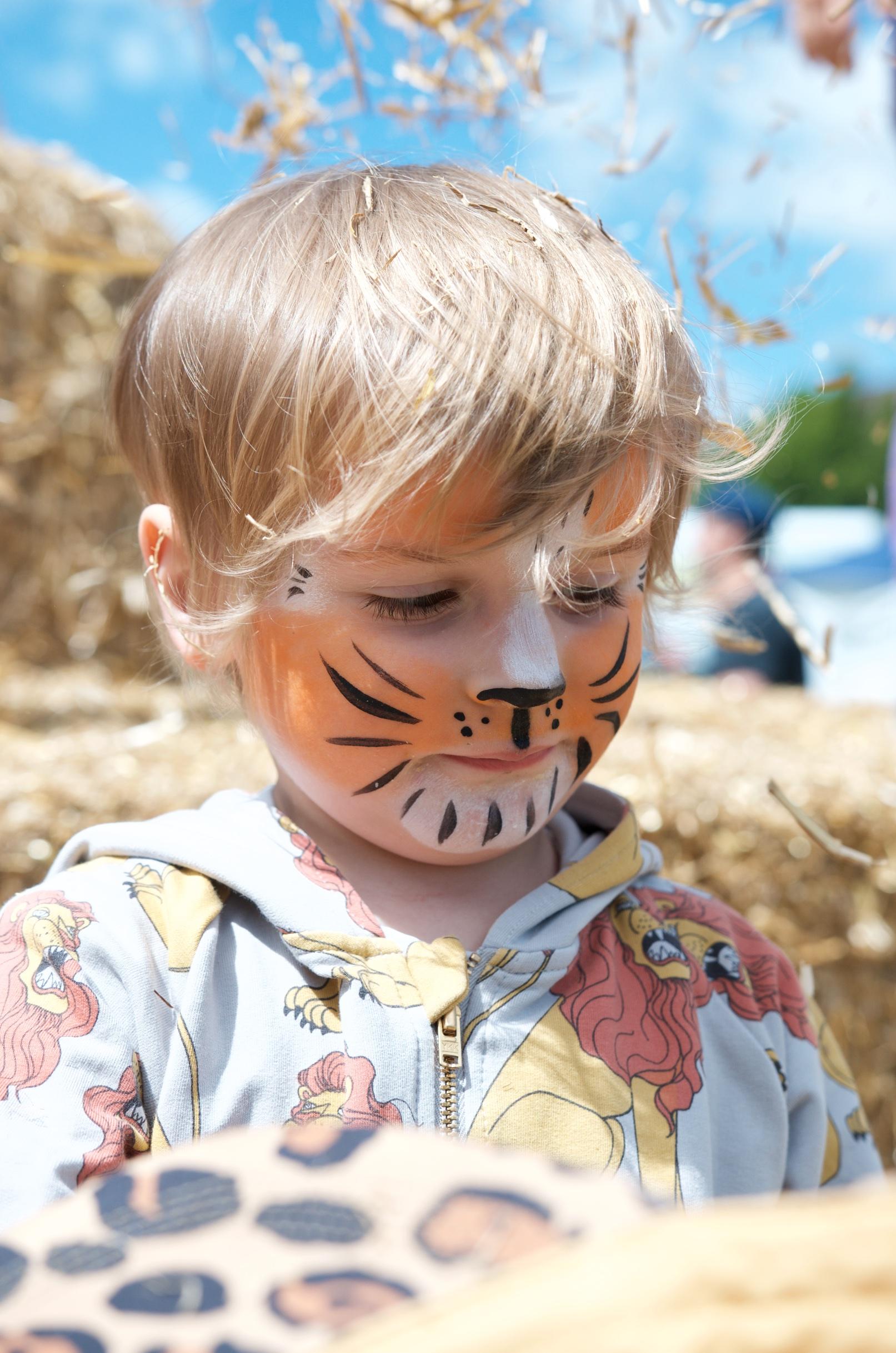 Kinderschminken und Toben im Stroh beim Hoffest von Gut Wulksfelde
