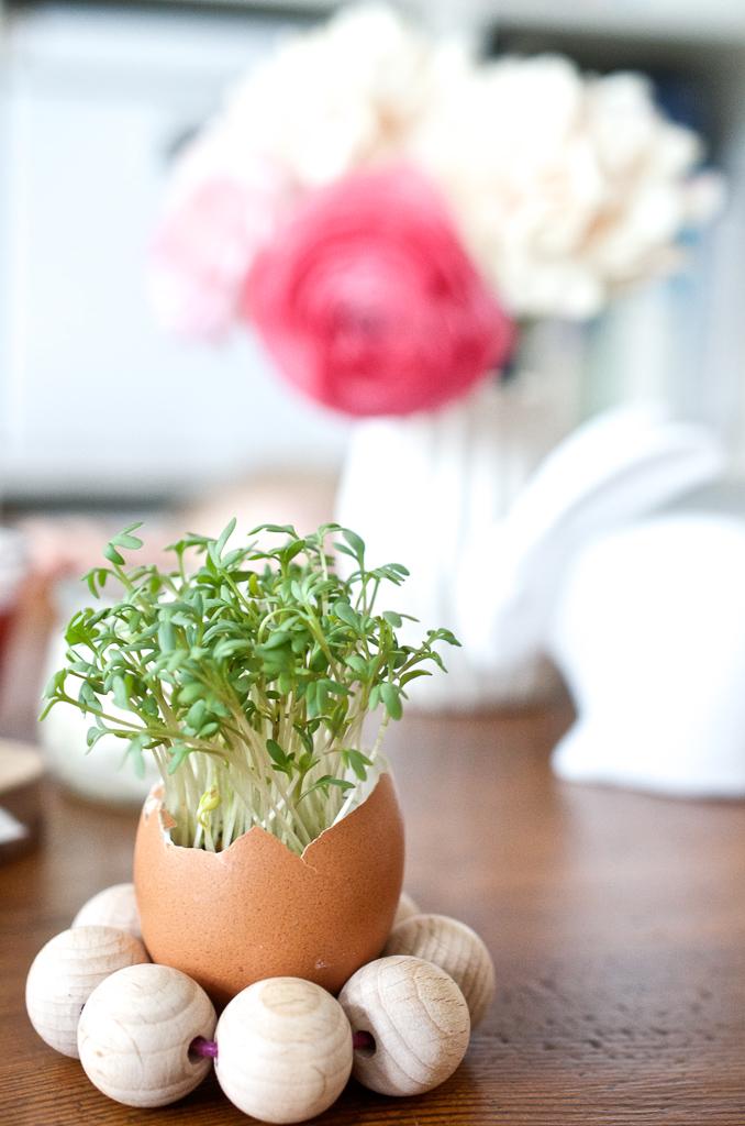 Oster-Ei mit Kresse - natürliche Tischdecke für den Oster-Brunch und schnelle DIY Idee für Eierbecher aus Holzkugeln