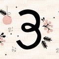 Adventskalender 2015 Pinkepank