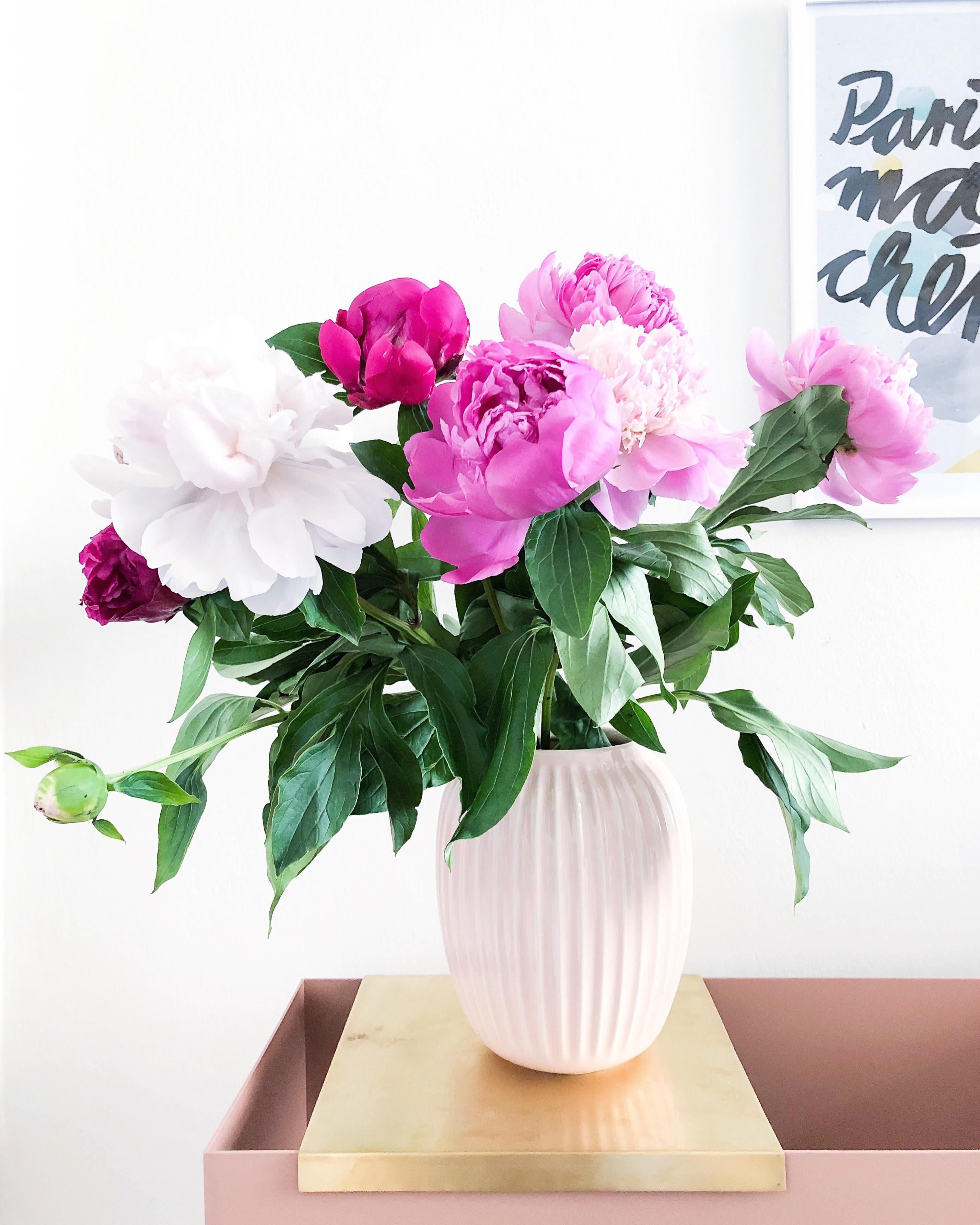 Pfingstrosen - meine Lieblingsblumen in der rosa Vase von Kähler