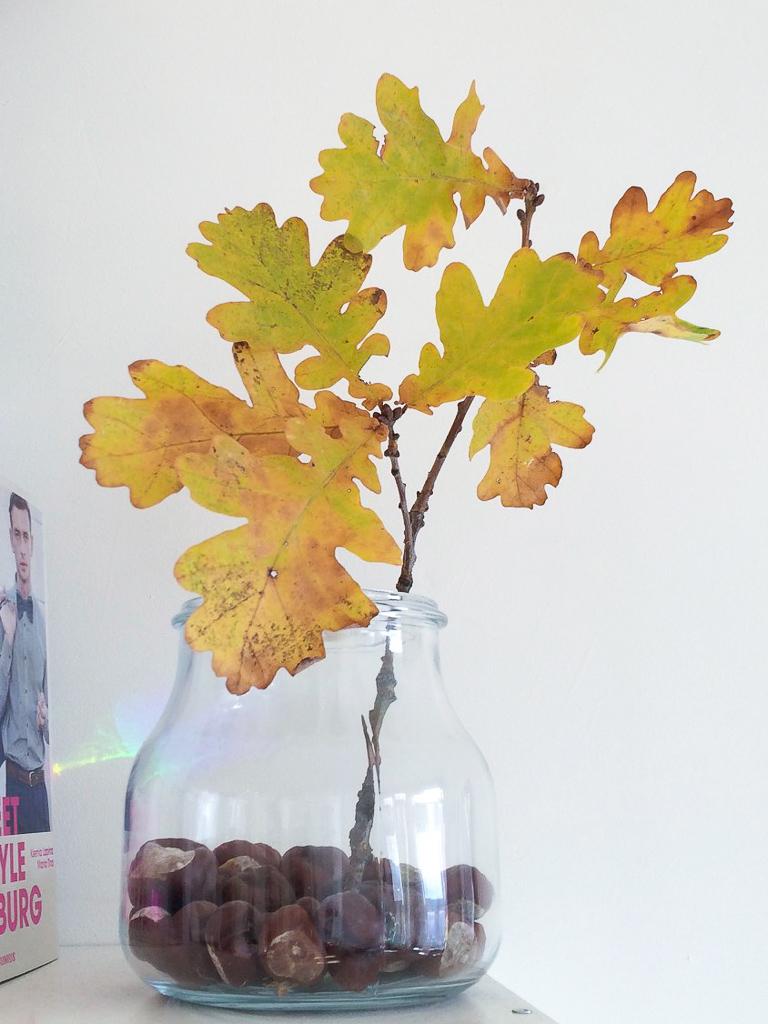Minimalistische Herbstdeko für drinnen mit Blättern und Kastanien