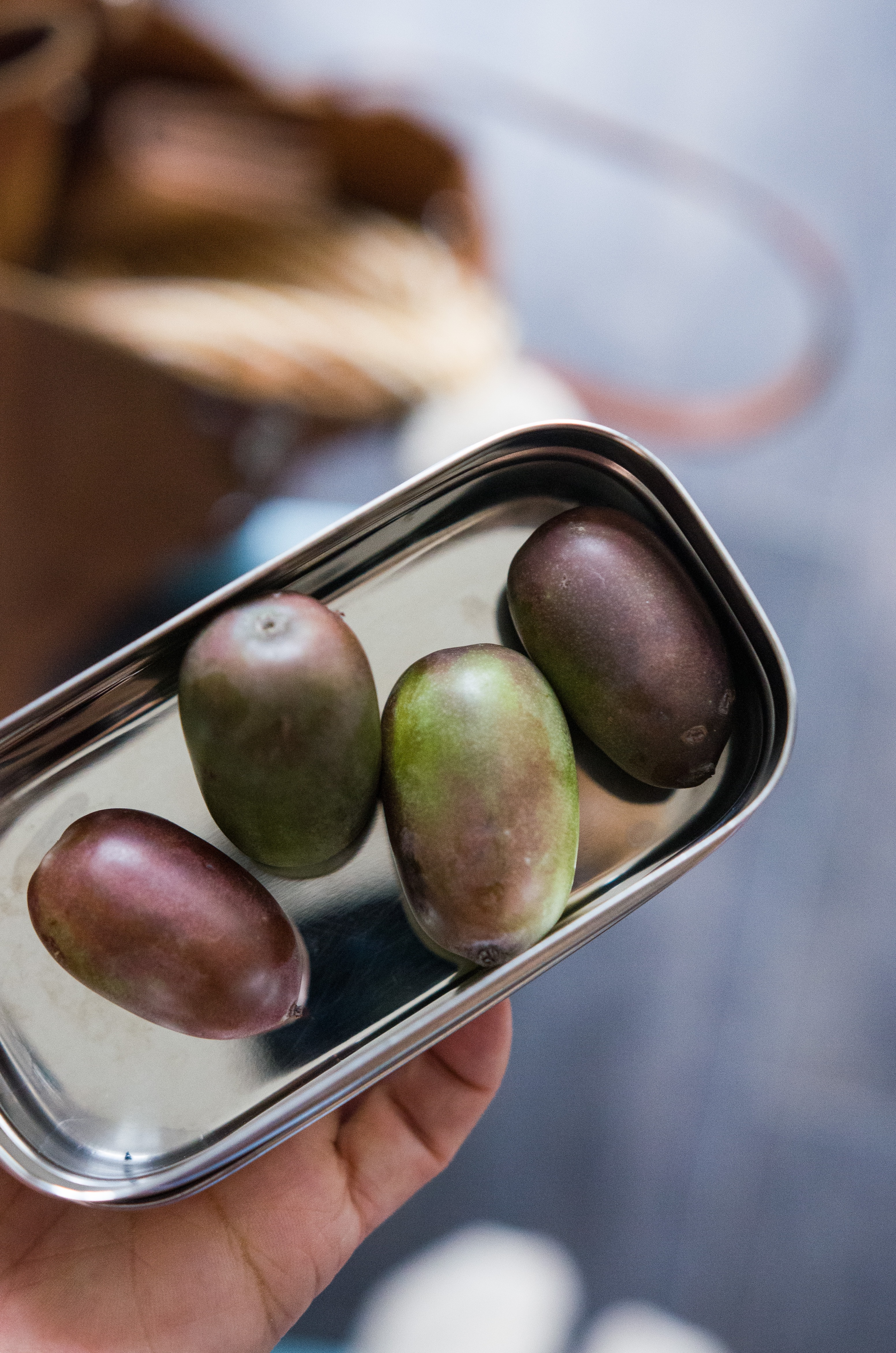 Mini-Kiwis, der perfekte Snack für unterwegs